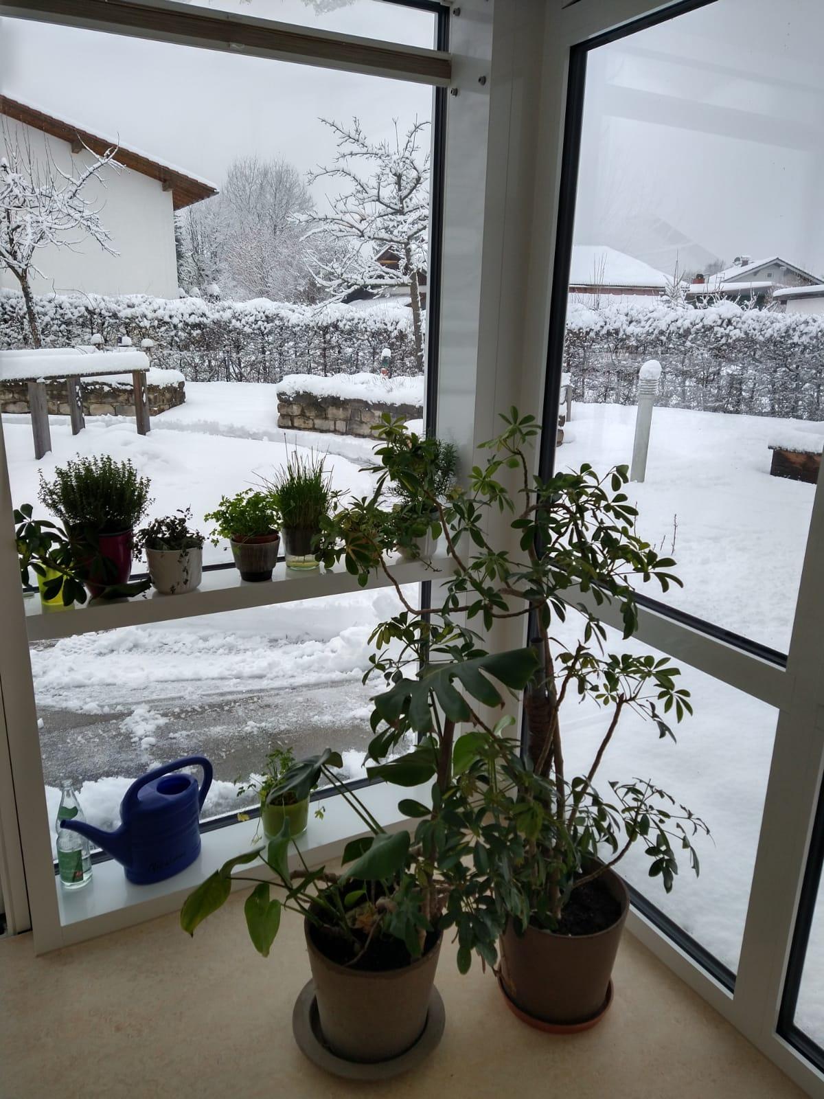 Der Schnee Ist Zurück