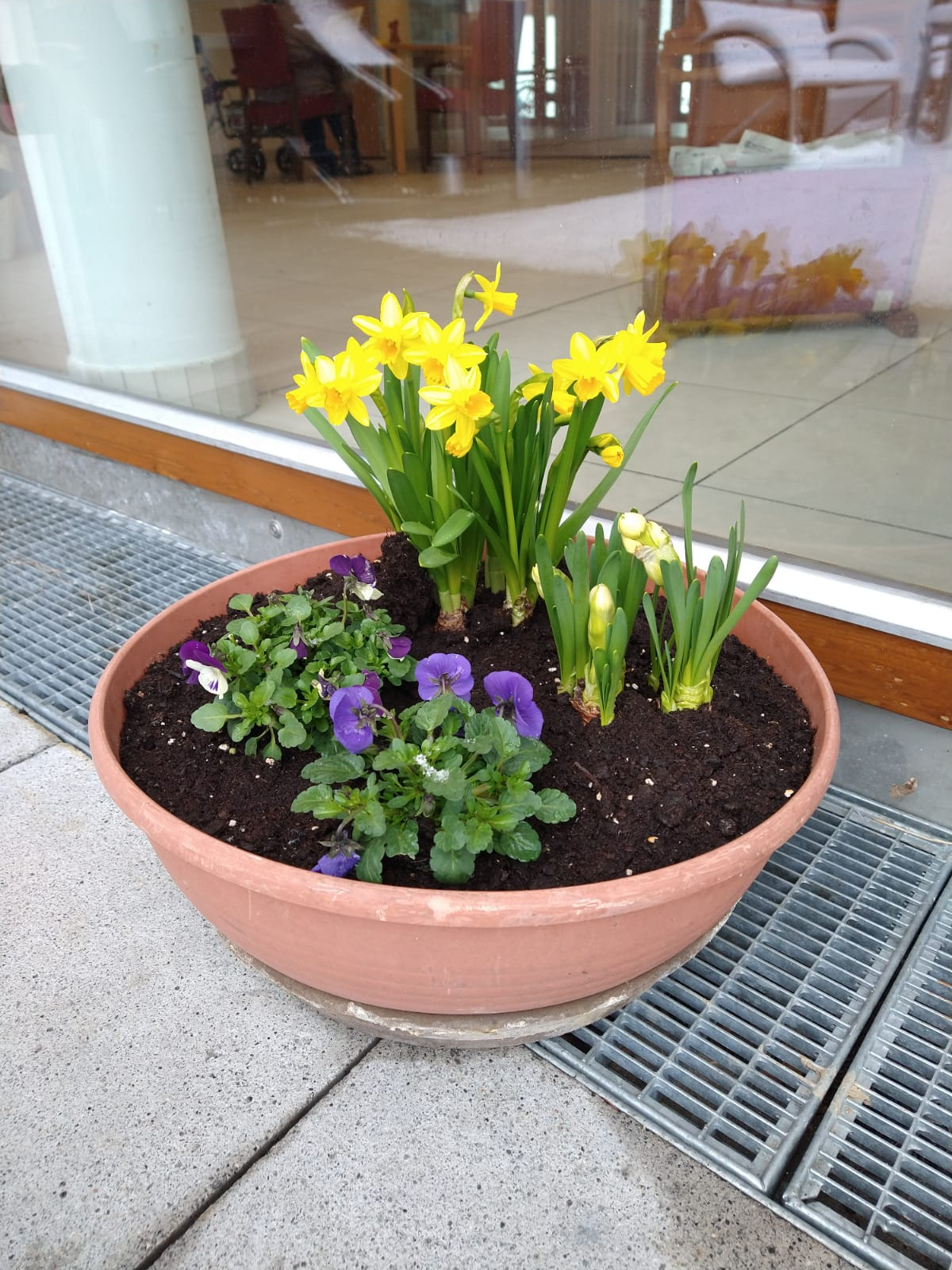 Frühlingsgruß Im Chiemgau-Stift