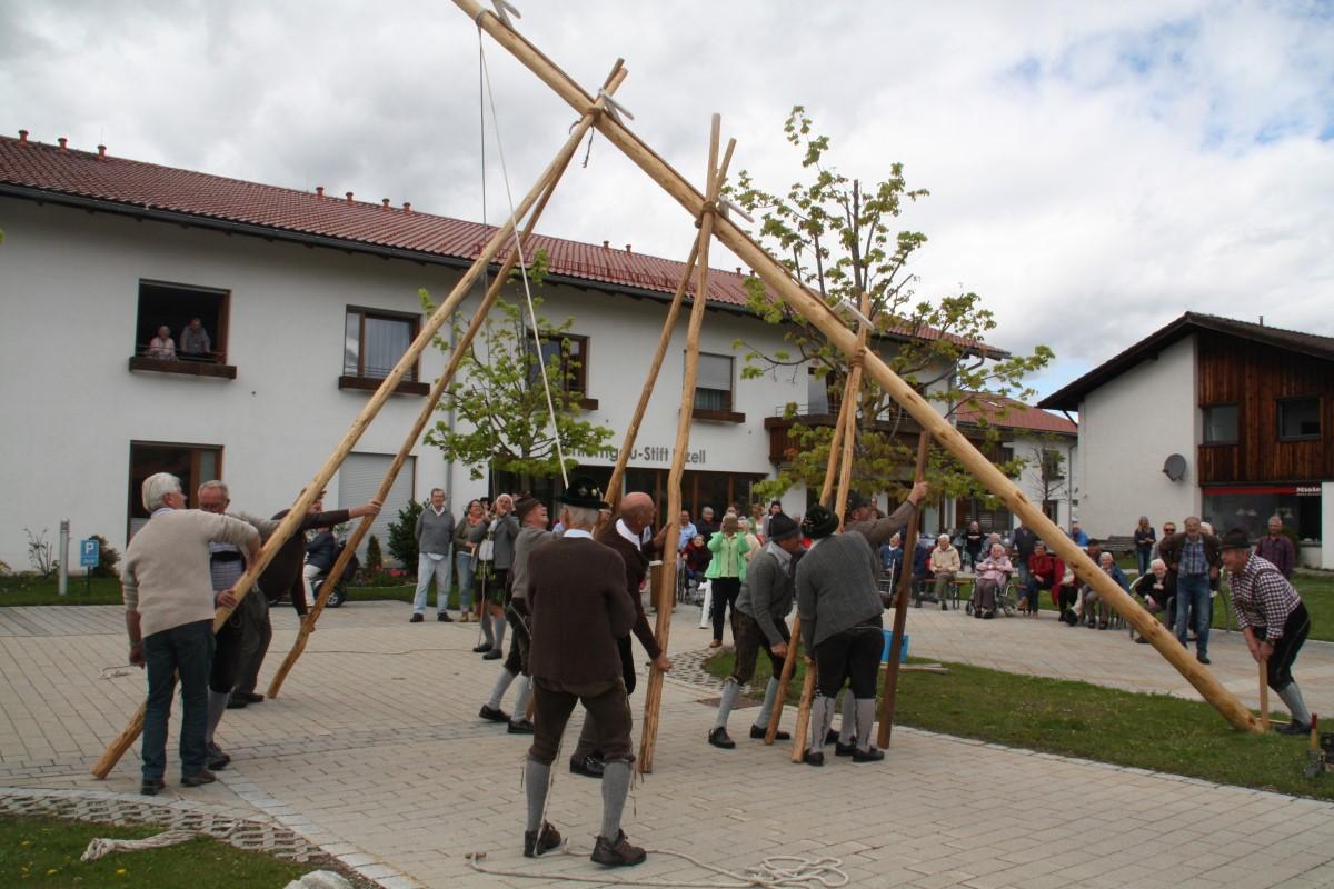 Ganz Traditionell Wird Der Maibaum Wird Aufgestellt.