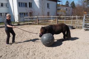 spielerisches Training